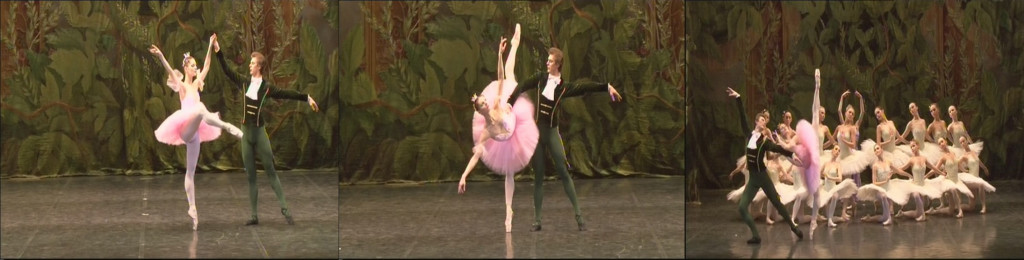 elena dance